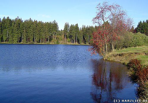 Der Hasenbacher Teich