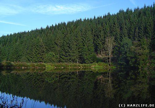 Der Klein-Clausthaler Teich
