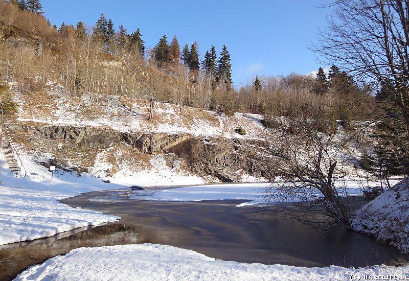 Winter am Blauen See