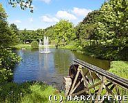 Teich im Kurpark
