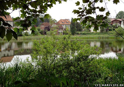 Seen und teiche im harz der ochsenpfuhl ein erdfallsee for Wassertiere teich