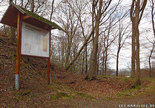 Die Burgruine Lutterberg