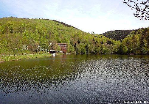 Am Wiesenbeker Teich