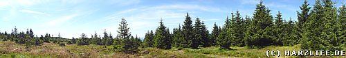 Panorama Acker-Reitstieg